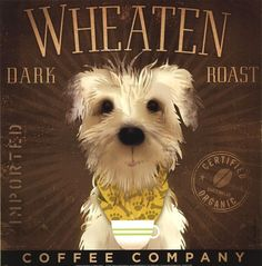 Wheaten Dark Roast, Stephen Fowler