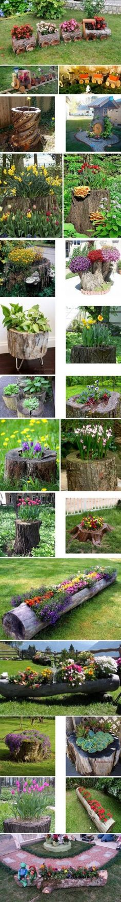 24 Tree Stumps Turned Into Beautiful Flower Planters