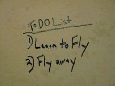 To do list: 1) Learn to fly. 2) Fly away.