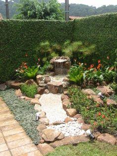 Plantas - Fonte & Pedra.