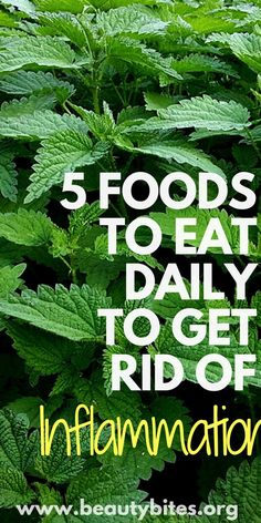 These are 5 foods that fight inflammation, but you do need to eat them daily