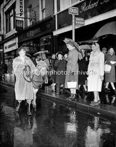 See more photos like this at www.irishphotoarc… 'Bus Fares Up' Maureen Pot… See more photos like this at www.irishphotoarc… 'Bus Fares Up' Maureen Potter finds an alternative mode of travel as a protest about an imminent increase in bus fares on Grafton Ireland Pictures, Grafton Street, Bus Travel, History Photos, Photo Archive, World Traveler, Travel Quotes, More Photos