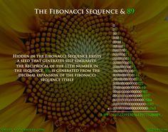 Fibonacci: The Fractions of Life