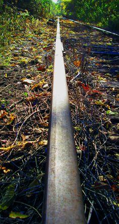 Endless Rail|Love's Photo Album