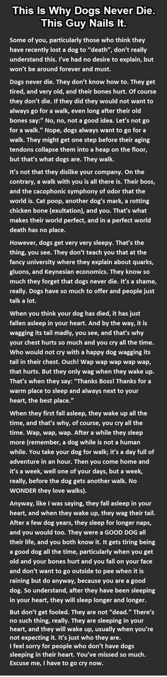 And then my eyes became moist. Wonderful way to think about how your dog never dies. Here is the credit and link: http://www.tickld.com/feels/t/903649