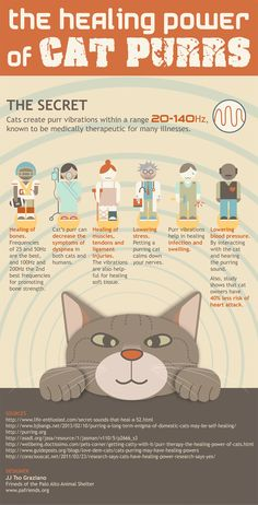 #Cats create purr vibrations within a range 20-140Hz, known to be medically therapeutic for many illnesses.