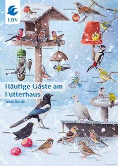 Animals And Pets, Kindergarten, Homeschool, Birds, Painting, Learn To Speak French, Pets, Painting Art, Kindergartens