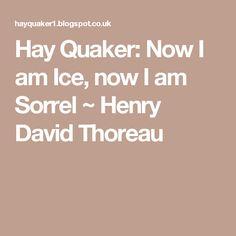 Hay Quaker: Now I am Ice, now I am Sorrel ~ Henry David Thoreau