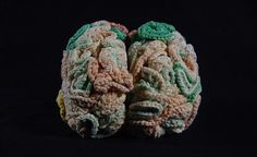 Pictured: The anatomically correct model of the human brain - made of wool #DailyMail