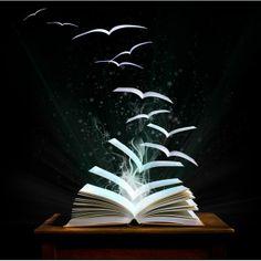 Dez livros fundamentais para entender a literatura latino-americana