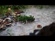 Relaxing Rain Video - Full HD Video - Rainy Day - YouTube