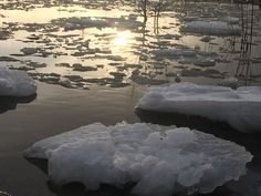 Taken on Tangen a wonderful afternoon, the ice is breaking up and the sun is going down by Kaia Huus - Photo 152422091 - Breakup, Ice, Water, Outdoor, Gripe Water, Outdoors, Breaking Up, Ice Cream, Outdoor Games