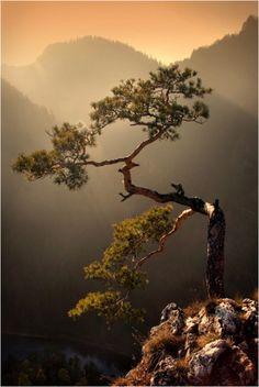 #中国风#最美的风景,总在最疯狂的地方。http://t.hujiang.com/album/1414092090/