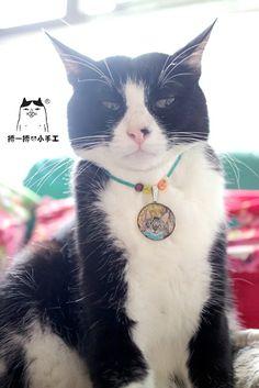 畢幸不幸轉轉轉: 貓友們的心愛貓咪頸鏈
