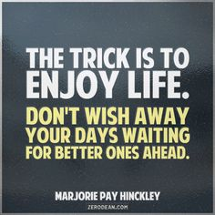 """The trick is to enjoy life. Don't wish away your days waiting for better ones ahead."" #life #quote #wishing #waiting #enjoy"