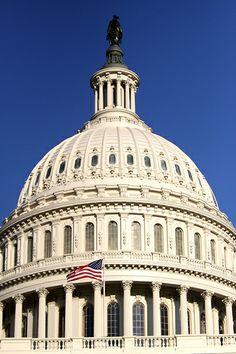 The United States Capitol building in Washington, D. Washington Dc, Casablanca, Puerto Rico, United States Congress, Dc Travel, Capitol Building, Taj Mahal, Natural Beauty, Road Trip
