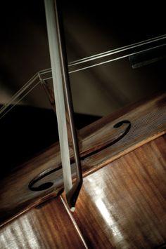 ♫♪ CELLO ♪♫♥.....La música es el corazón de la vida. Por ella habla el amor; sin ella no hay bien posible y con ella todo es hermoso. Franz Liszt