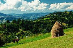 in Maramures you can relax and enjoy the beautiful landscapes that treasures Romania, find the happiest cemetery from Romania and eat healthy food straight from the farmers. #travelagency #romania #tour #travel #destination #maramures #tradition