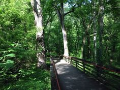 Tackle This Easy Hike In Georgia At Cascade Springs Nature Preserve Go Hiking, Hiking Trails, Beautiful Places To Visit, Places To See, Hiking In Georgia, Waterfall Trail, Spring Nature, Where To Go, Day Trips
