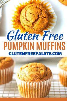 An easy to make, tried and true gluten free pumpkin muffin that is tender and perfectly spicy. You can use individual spices or a pumpkin spice mix in this muffin recipe. Best Pumpkin Muffins, Gluten Free Pumpkin Pie, Pumpkin Muffin Recipes, Pumpkin Chocolate Chip Muffins, Gluten Free Donuts, Chocolate Chip Oatmeal, Gluten Free Baking, Gluten Free Desserts, Chia Pancakes