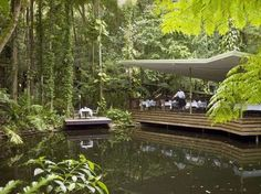 Daintree Rainforest Retreat Eco Lodge & Resort in Queensland is quite simply… pure escapism. A private rainforest Eco lodge in Australia is nestled deep within a sacred valley. Come visit our Eco resort in the Daintree. The Whitsundays, Daintree Rainforest, Great Barrier Reef, South Pacific, Holiday Destinations, Gold Coast, Beautiful Beaches, The Secret, Tourism