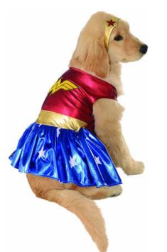 The Wonder Woman Deluxe Dog Costume is the perfect 2019 Halloween costume for you. Show off your costume and impress your friends with this top quality selection from Costume SuperCenter! Best Dog Halloween Costumes, Cat Dog Costume, Costume Chien, Pet Costumes For Dogs, Superhero Halloween, Cat Costumes, Halloween Fancy Dress, Costumes For Women, Woman Costumes