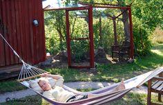 Johannas Hemsida - Hönsgård