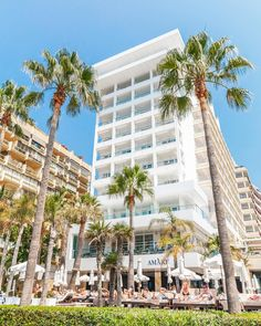 In front of Amàre Marbella hotel! #AmareMarbella #hotellife #marbs #costadelsol #marbella #marbellalife #marbellahotel #hotelmarbella #iloveit  #architecturelovers #palmtrees #ilovepalms