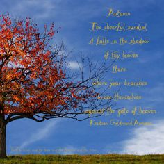 Autumn  The cheerful sundial;  it falls in the shadow  of thy leaves.  there  where your branches  brace themselves  against the gate of heaven  ~ Kristian Goldmund Aumann