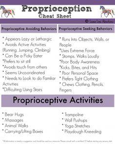 Proprioception cheat sheet