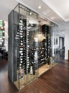 Glass Case | Bottle Display | Storage Idea | Wine Cellar | Custom Design | Home Ideas | Focal Point | Room Display | Conversation Piece | Wine Collection Ideas