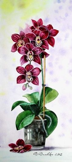 Love the layout! Botanical Drawings, Botanical Illustration, Botanical Prints, Selling Paintings, Buy Paintings, Art Floral, Beautiful Artwork, Beautiful Flowers, Watercolor Flowers