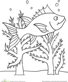 Color The Swimming Fish Scene