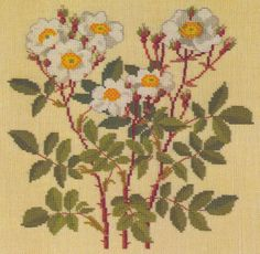 Gallery.ru / Фото #8 - Flowers and Berries in Cross Stitch - Mosca