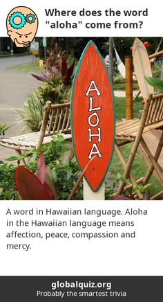 "Where does the word ""aloha"" come from? a word in Hawaiian language! Aloha in the Hawaiian language means affection, peace, compassion and mercy."