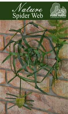 Nature Craft: How to make a Spider Web