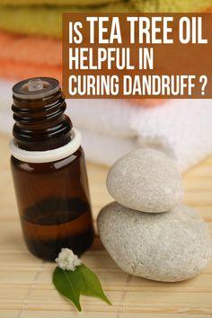 Is Tea Tree Oil Helpful In Curing Dandruff?