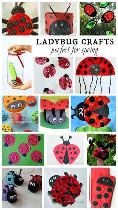 Ladybug crafts perfect for Spring
