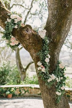 25 Best beltane ranch, glen ellen, ca images in 2016 | Mod wedding
