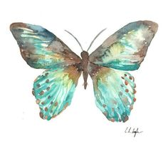 Blue Teal Watercolor Butterfly, Original Watercolor Painting, 8x10,... ❤ liked on Polyvore featuring butterflies and backgrounds