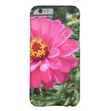 Pink Zinnia iPhone 6 Case