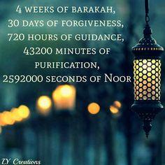 4 weeks of barakah