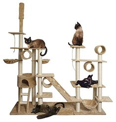 FEATURES: Perfect for Your Cat to Scratch, Sleep, Play, or Purr on. Easy to set up - includes assembly instructions MATERIALS: Constructed from pressed wood wrapped in beautiful faux fleece INCLUDES: Cradles, Baskets, Ropes, Hammock, Top Post, Allen Key & Bolts, Assembly Instructions
