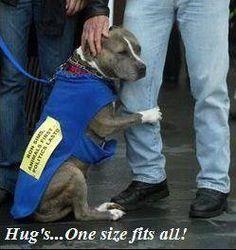 Hugs.. how precious. click like.