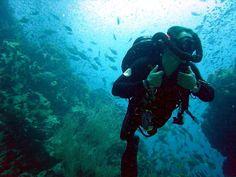 Top 3 manufacturers of #scuba #diving equipment. #escafandraautónoma equipo