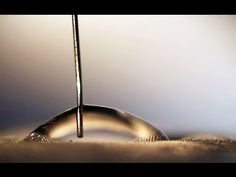 Magnetic microhair material can change transparency, and make water flow uphill By Ben Coxworth August 8, 2014
