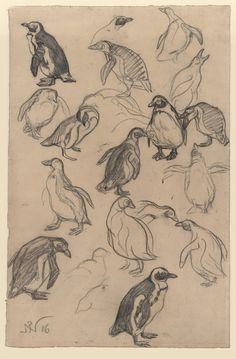 Paul Neuenborn, Penguins, 1906. Black chalk on paper.Wallraf-Richartz-Museum & Fondation Corboud, Cologne. Source RBA