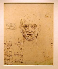 Male facial drawing study by Leonardo da Vinci (1489-1490)