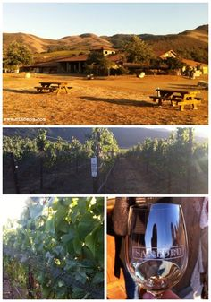 Sanford Winery near Santa Barbara #TMOM #ToyotaWomen