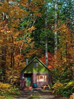 Forest Cabin, The Cascades, Oregon LOVE LOVE LOVE, the colors, the season, the space, someday I may visit this place.